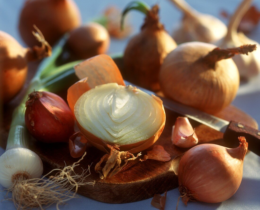 Still life with assorted onion family vegetables