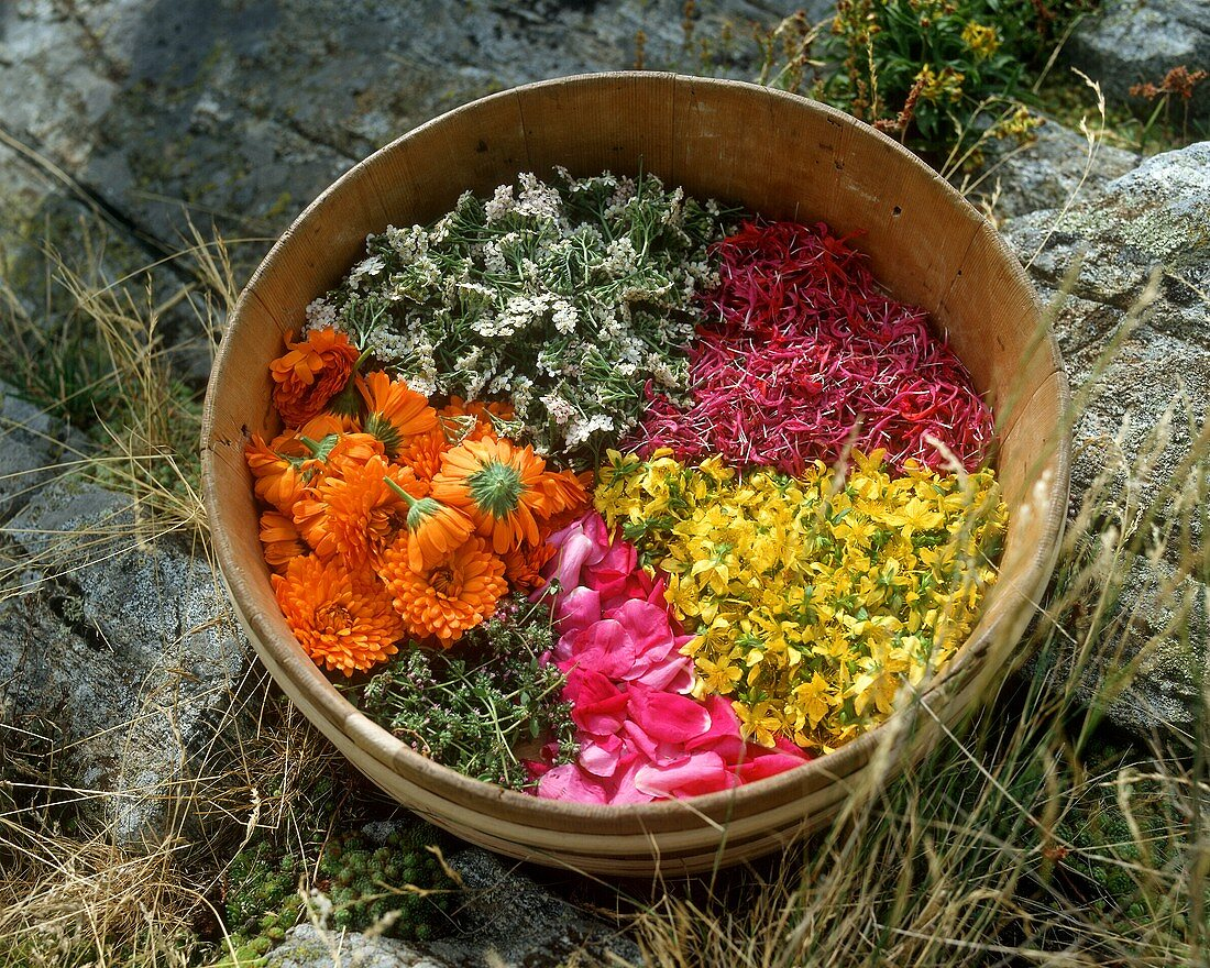 Herbs & flowers for drying in wooden bowl (perfumed pot pourri)