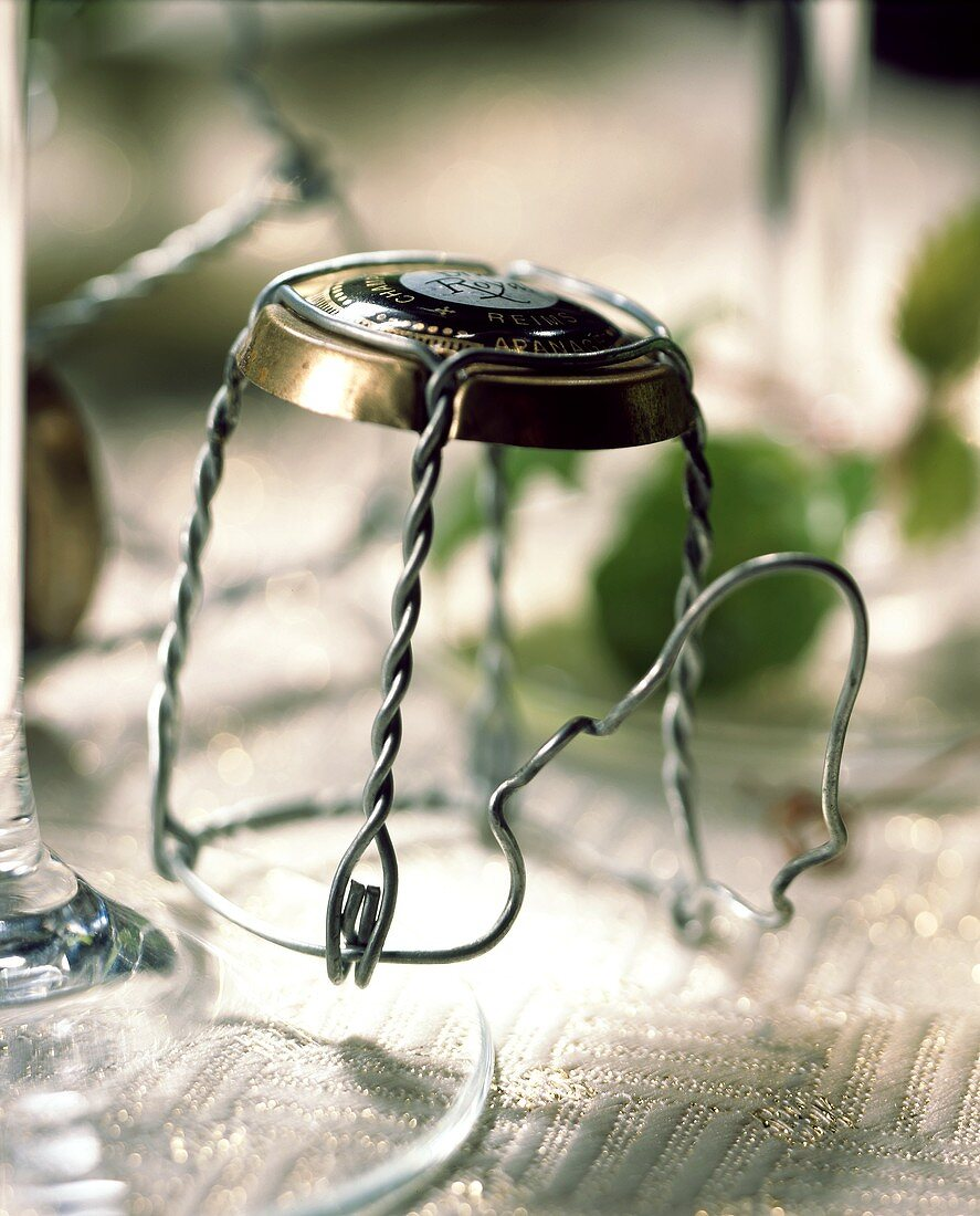 Wire fastening for champagne bottle