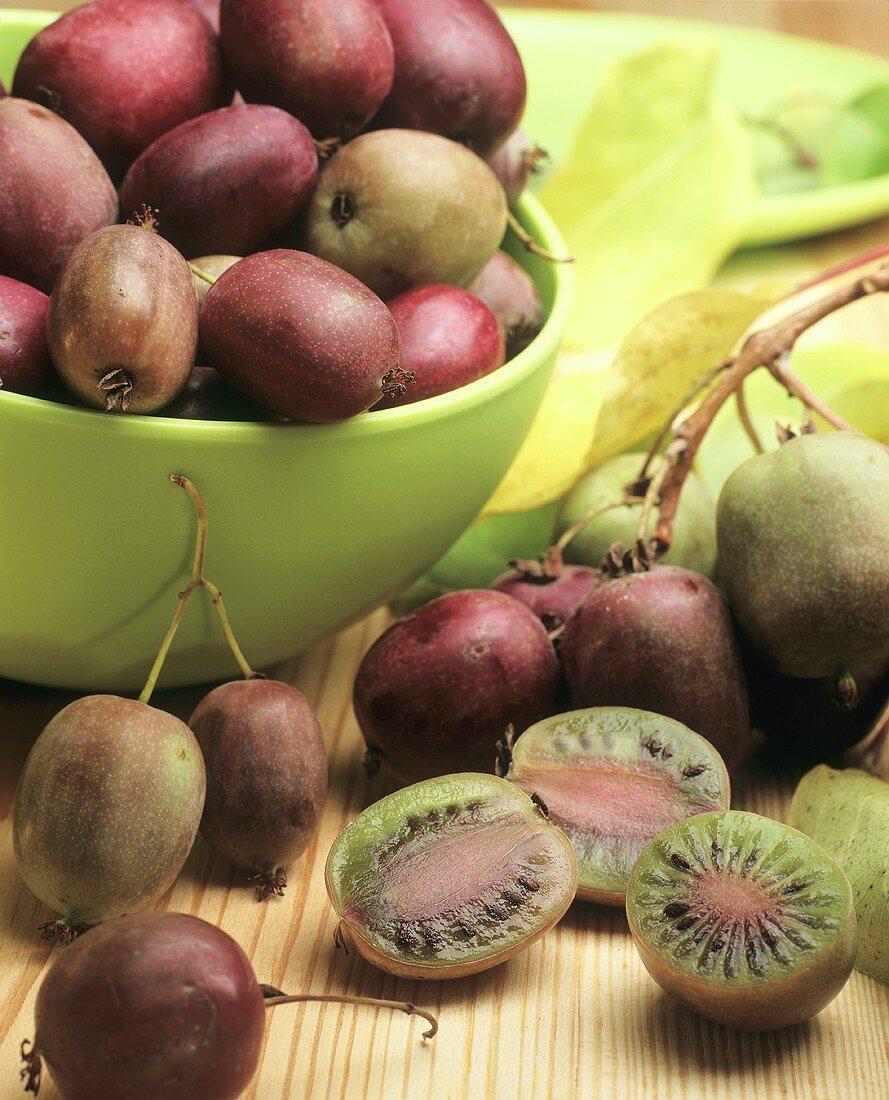 Actinidia (Actinidia colomicta, mini kiwi fruits)