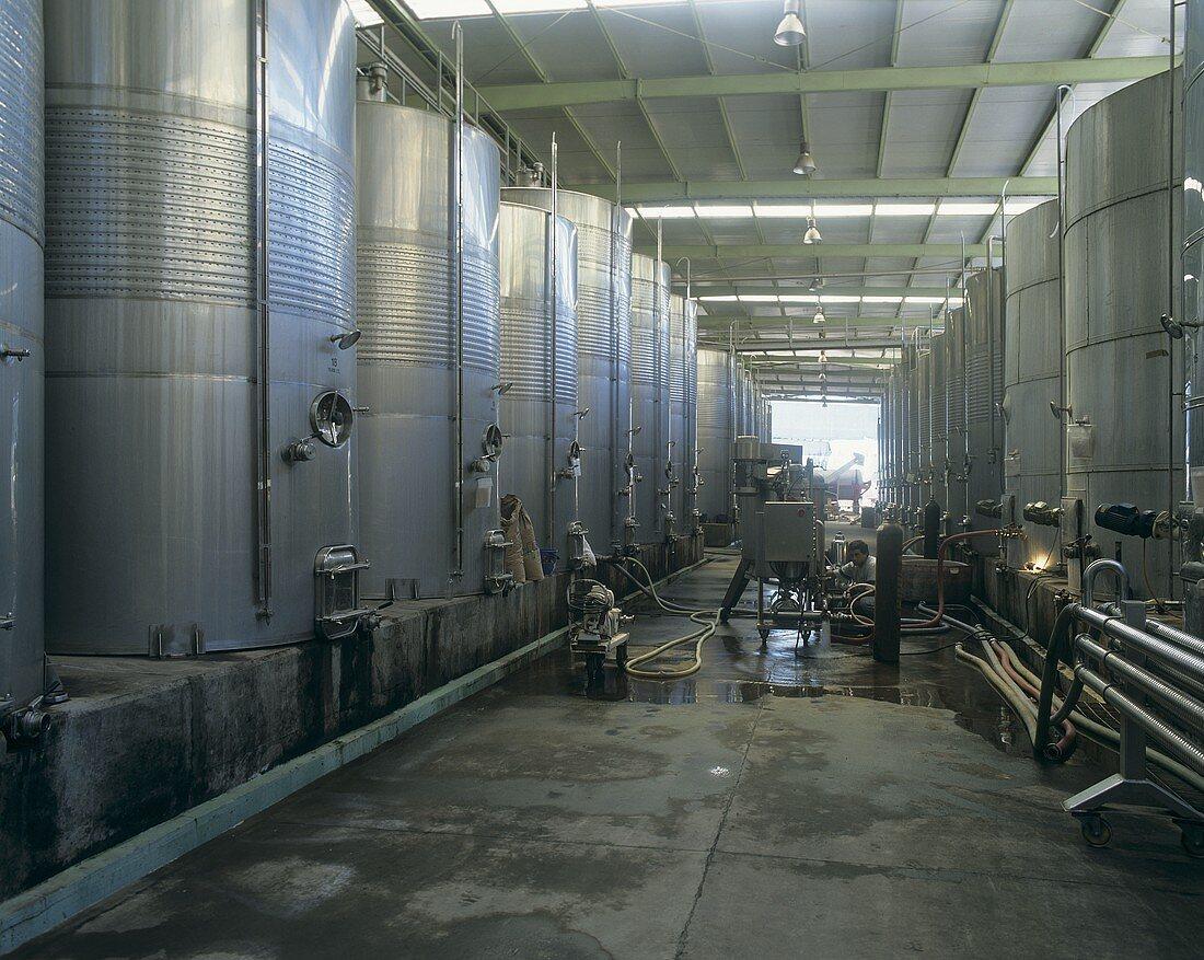 Wine tanks, Santa Rita in Maipo Valley, Chile