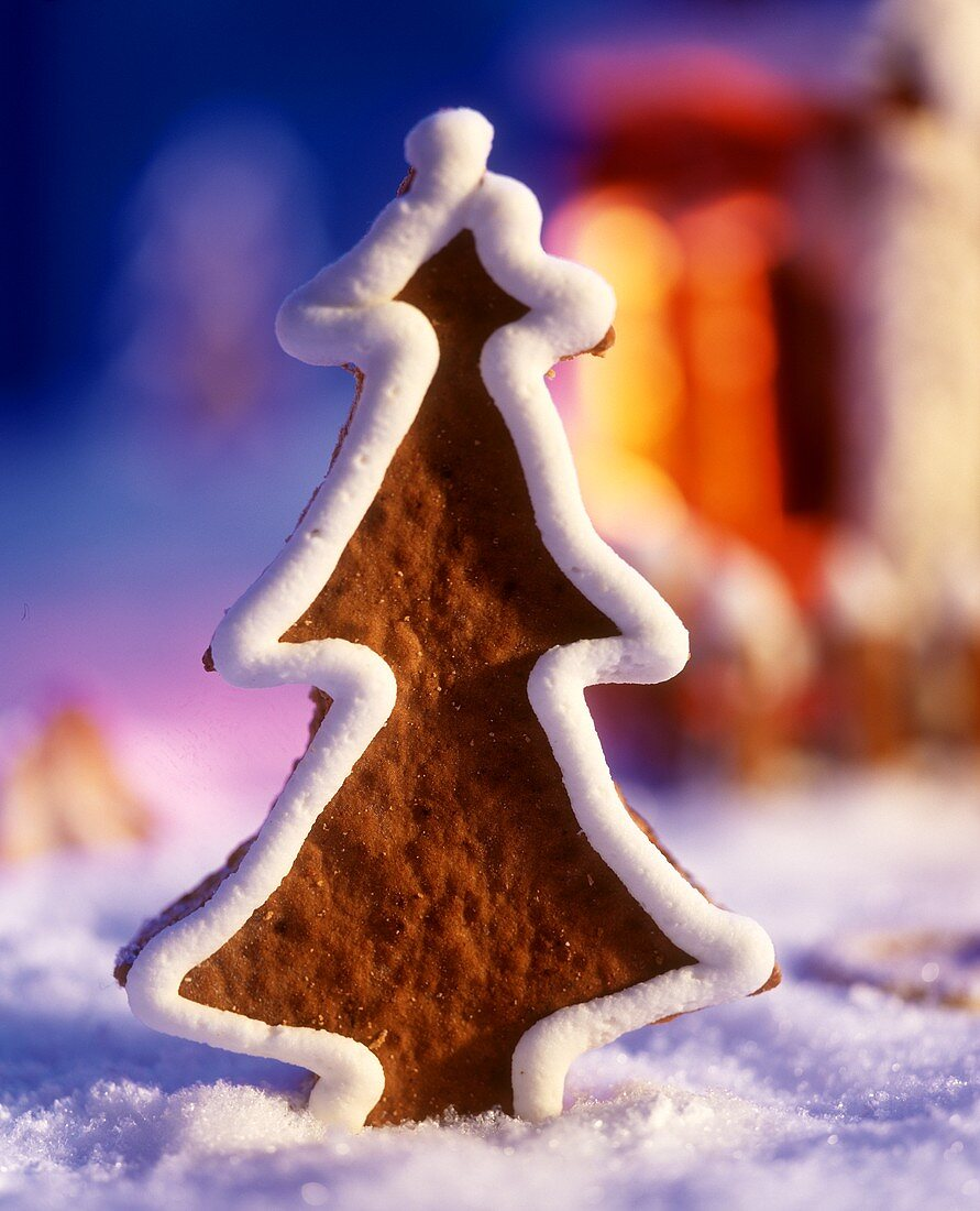 A fir tree-shaped gingerbread biscuit