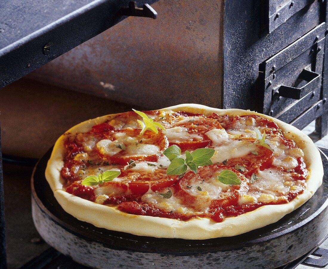 Pizza with tomatoes and mozzarella