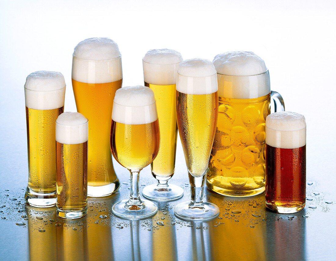 Various types of beer in beer glasses