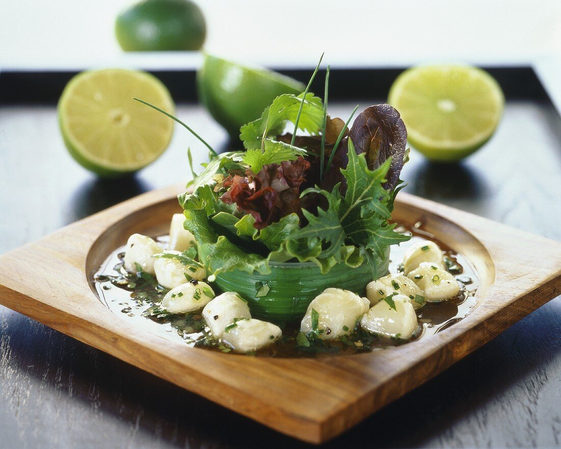Salad leaves with marinated pétoncles (scallops)