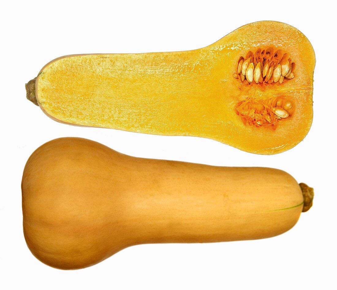 Butternut squash, cut open on white background