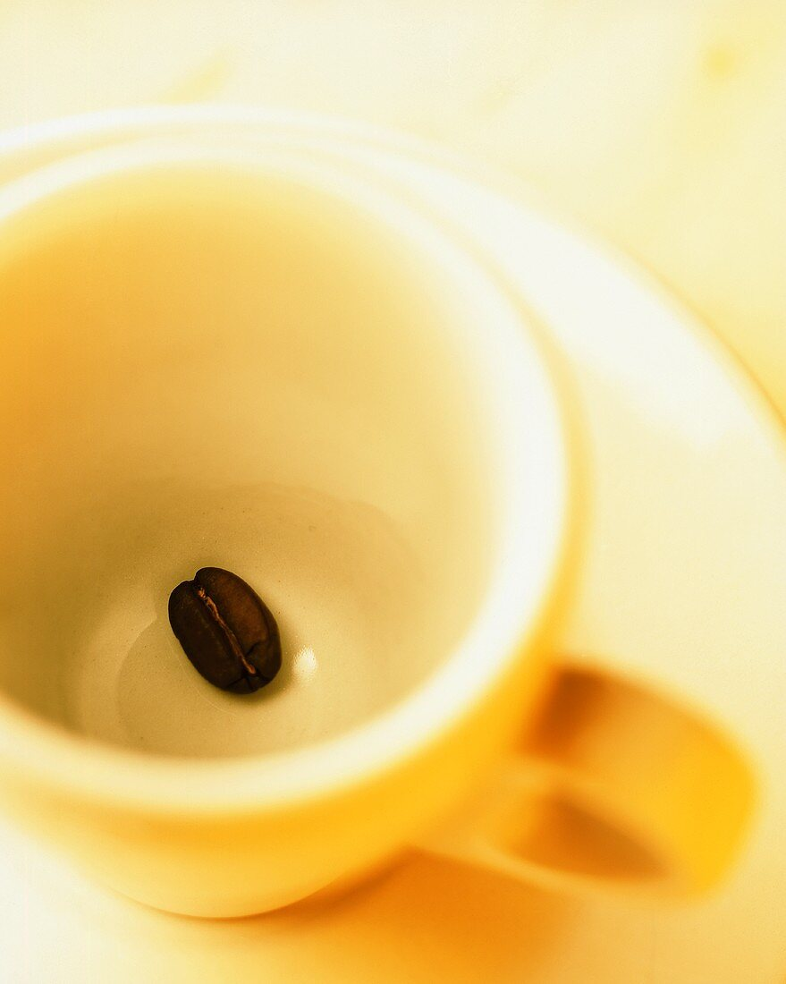 An espresso cup with a single coffee bean