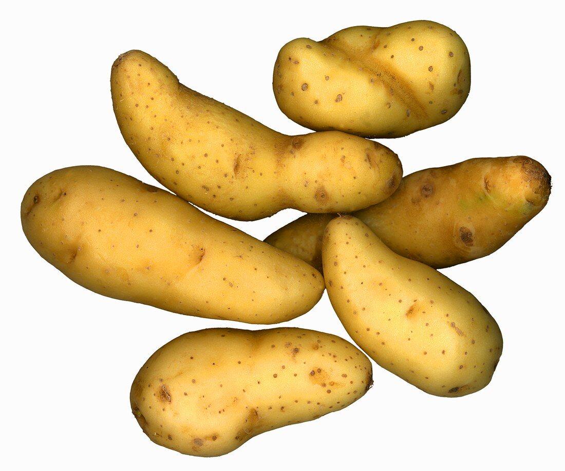 Six Ratte potatoes
