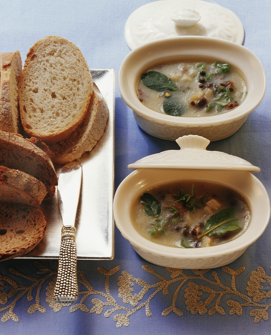 Goose rillettes with slices of bread