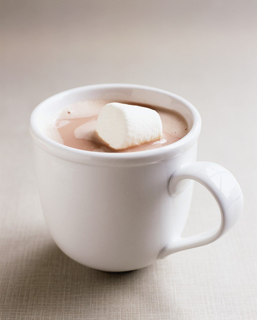 A cup of cocoa with marshmallow