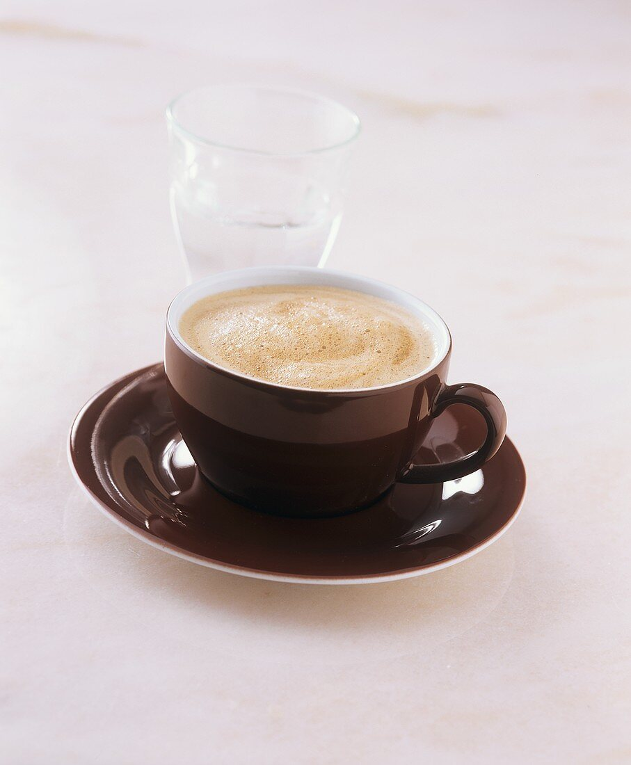 Wiener Melange (coffee speciality) with glass of water