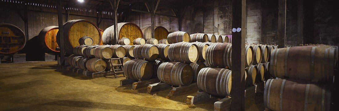 Cellar, Viña Valdivieso, one of the oldest wineries in Chile