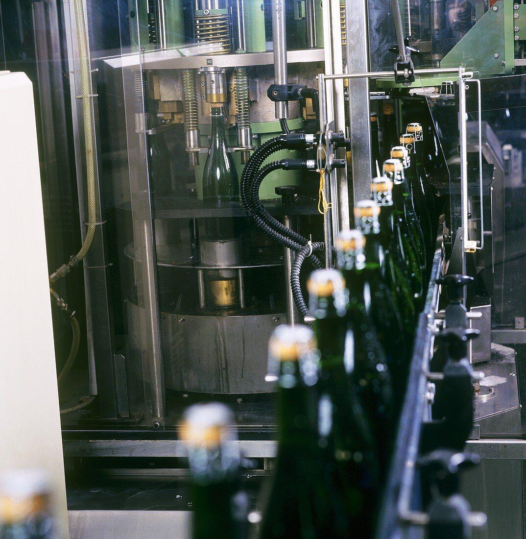 Putting agraffe (wire) on sparkling wine bottles by machine