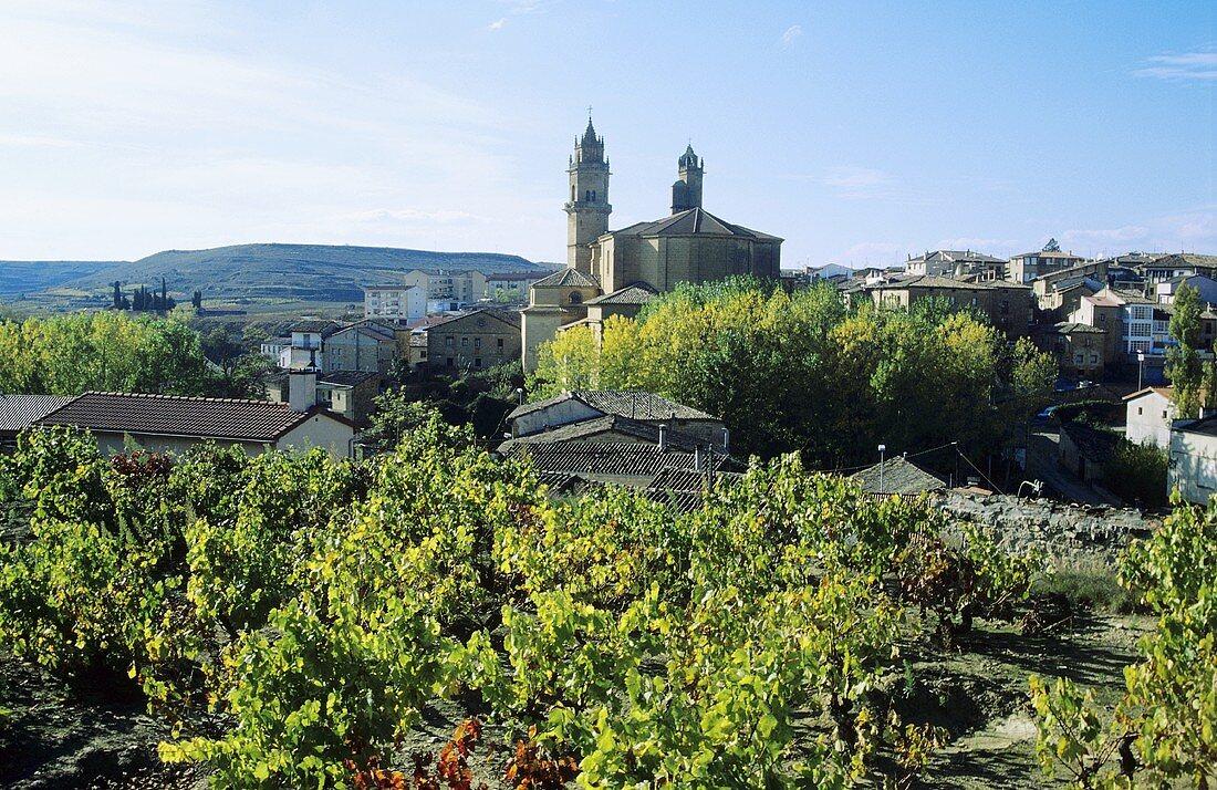 Elciego; Rioja Alavesa, Rioja; Spain