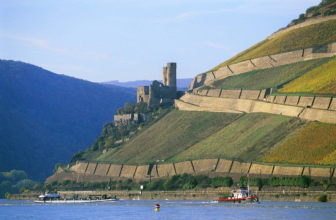 Burg Ehrenfels & Einzellage Rüdesheimer Berg, Rheingau