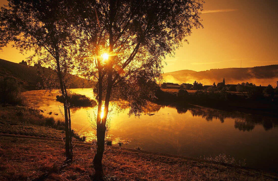 Morning on the Saar at Schoden, Germany