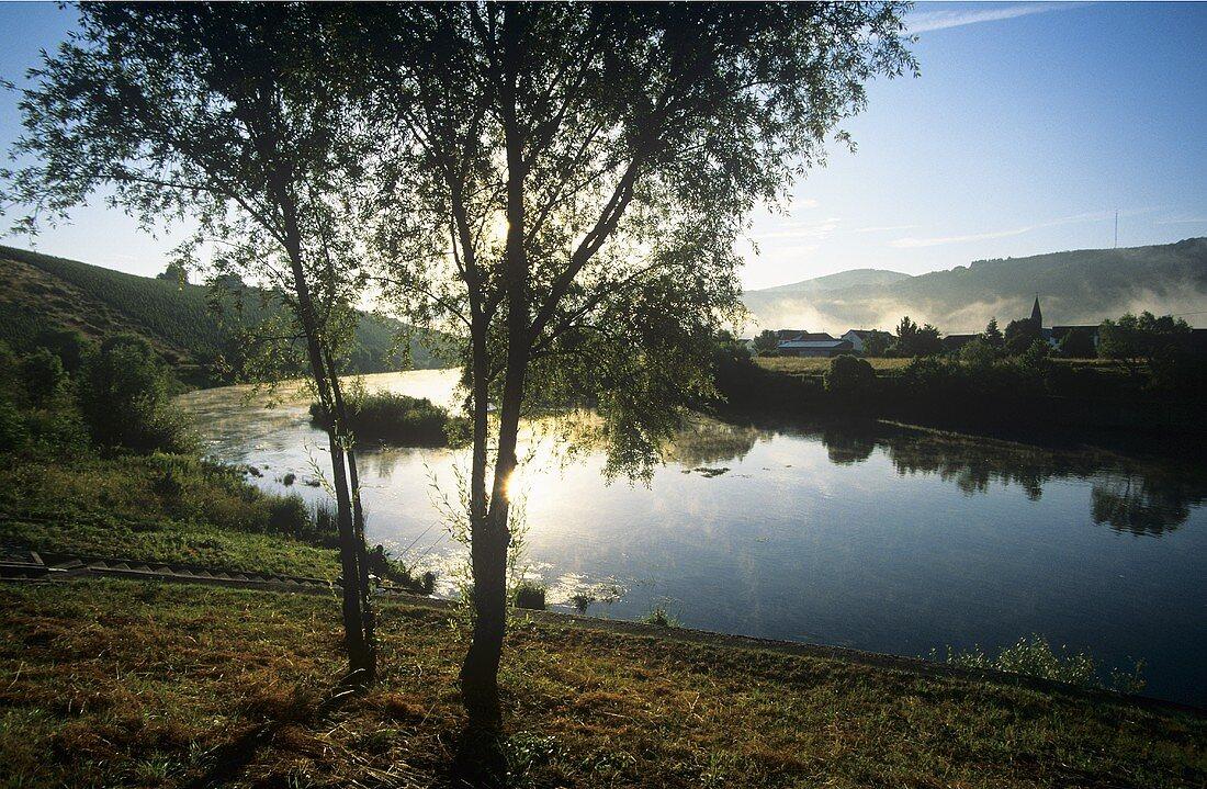 Morning on the Saar near Schoden, Germany