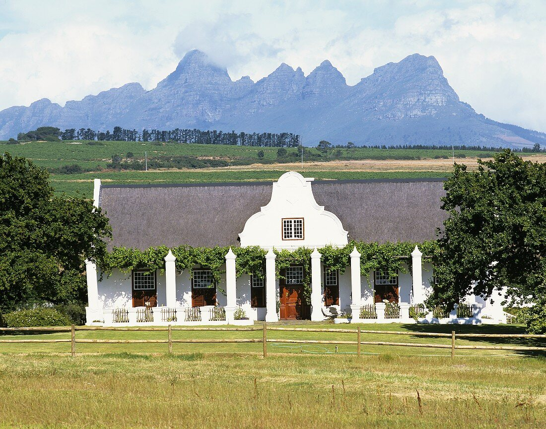 Meerlust Wine Estate near Helderberg, Stellenbosch, S. Africa