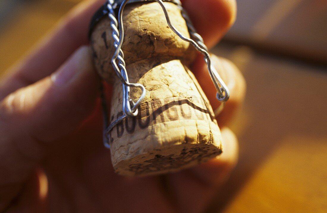 Hand hält Korken von Cremant de Bourgogne