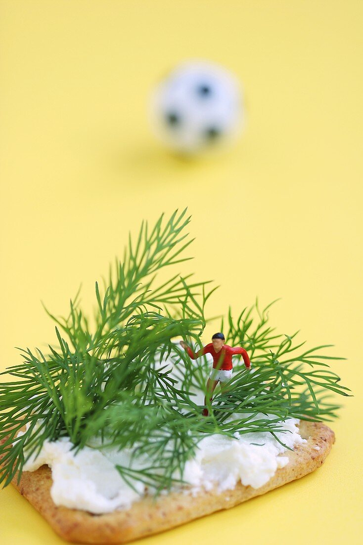 Miniature footballer fighting his way through forest of dill