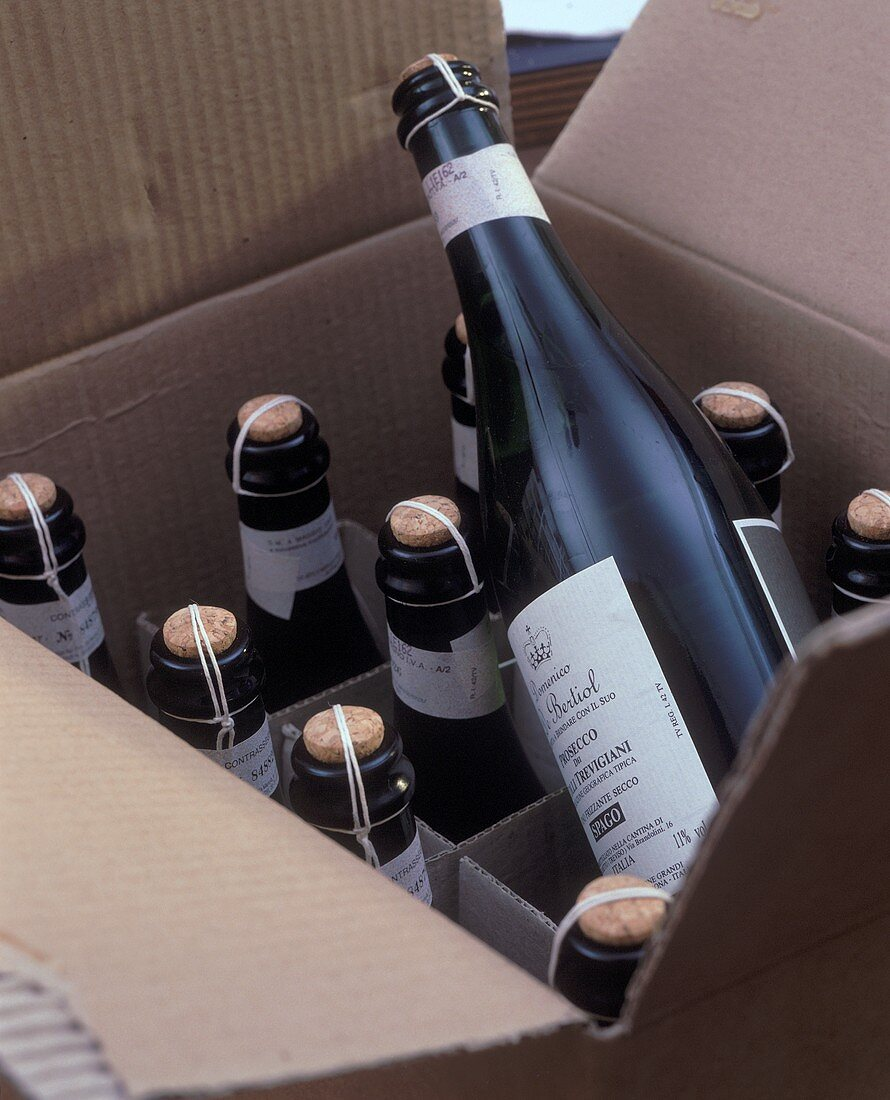 Bottles of Prosecco dei Colli Trevigiani in cardboard box