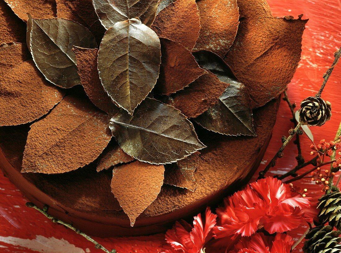 Festive chocolate gateau