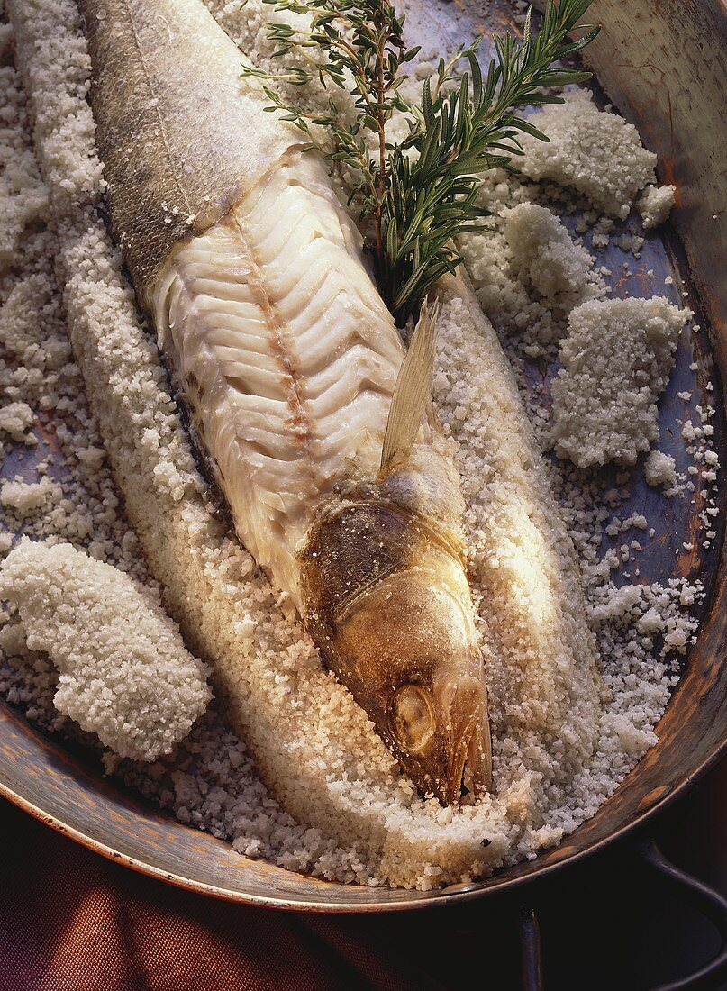 Pike-perch in sea salt crust with thyme & rosemary sprigs
