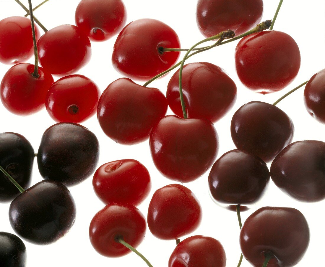Red and Black Cherries