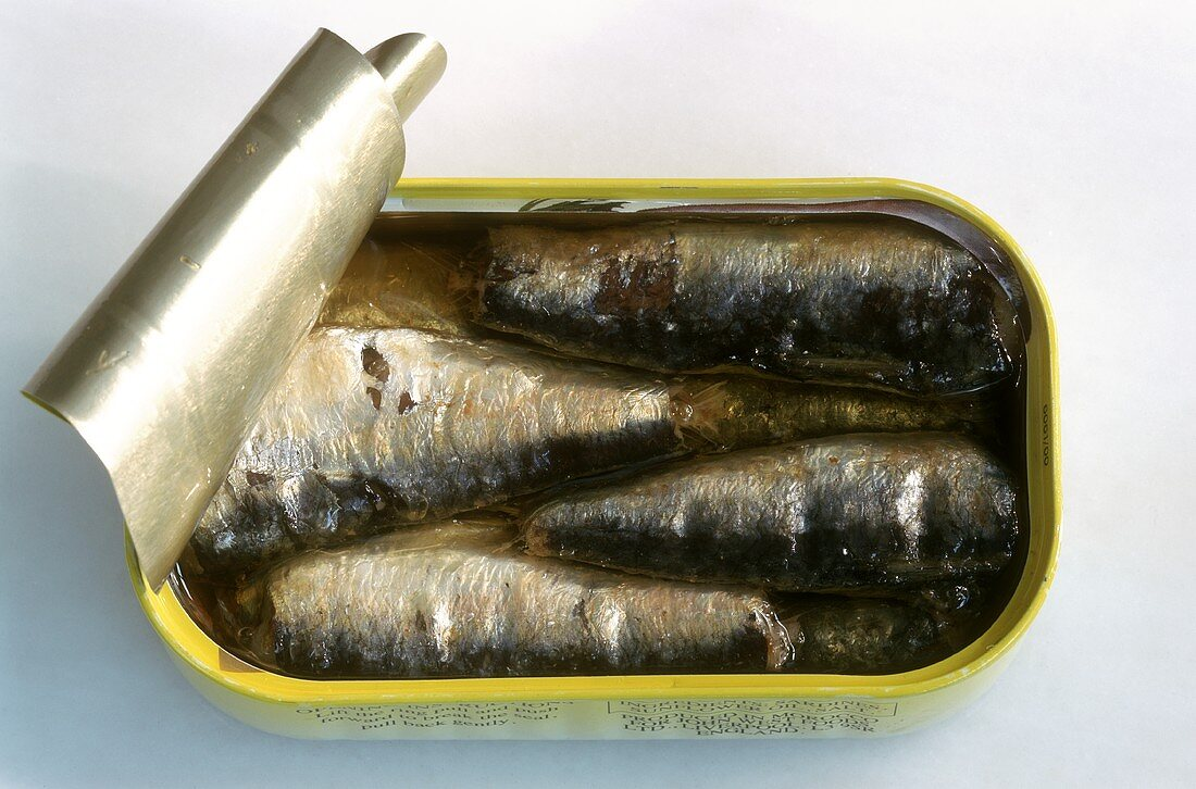 Sardines in an opened tin