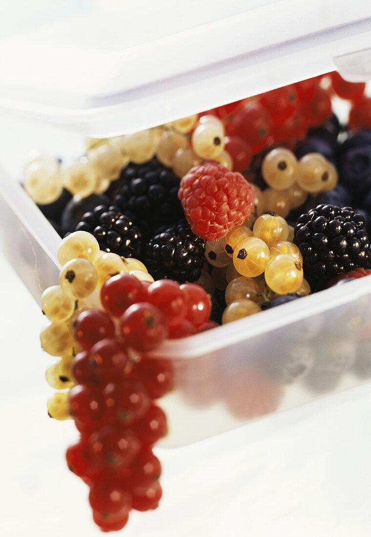 Assorted Berries in a Plastic Container