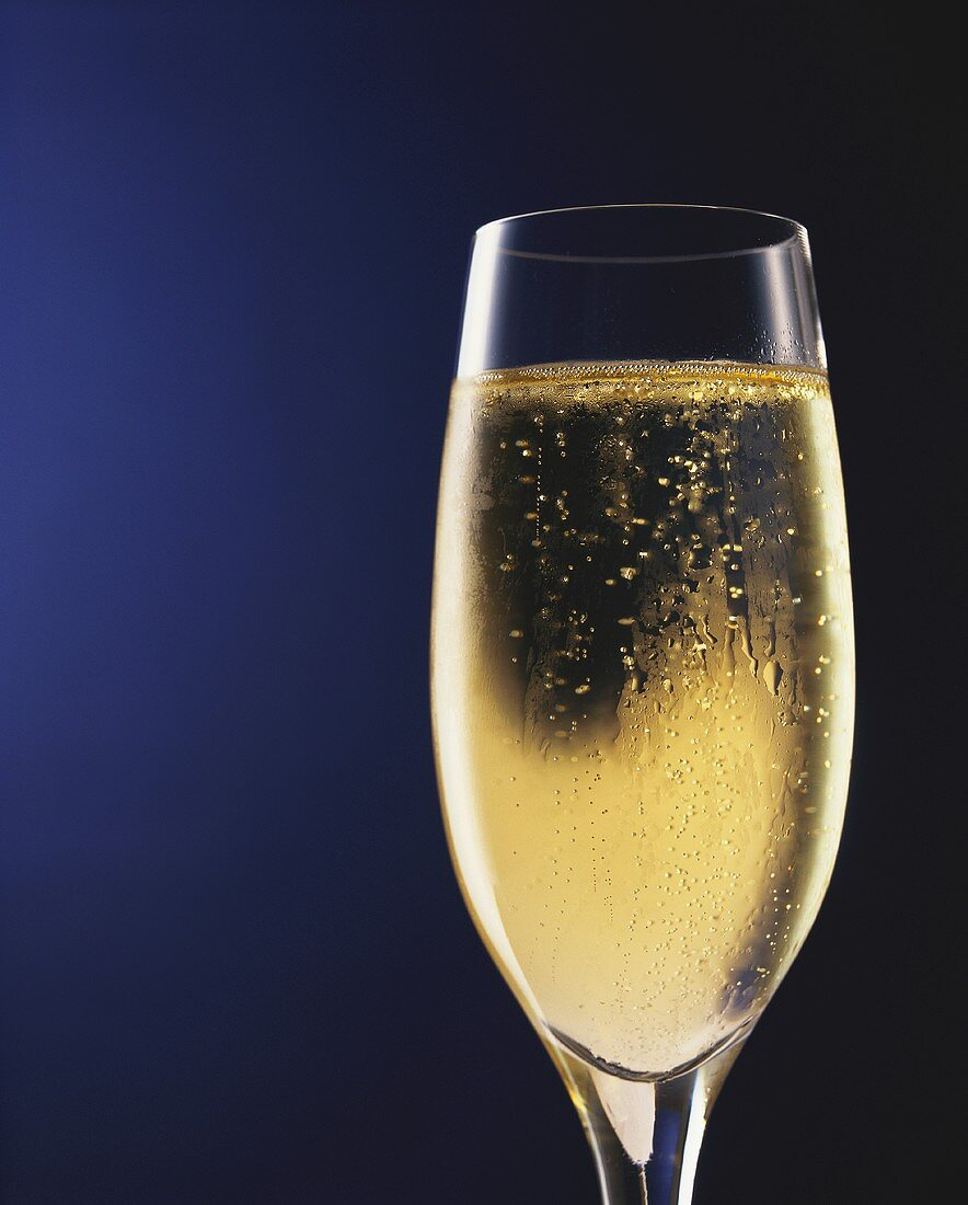 A glass of champagne against dark-blue background