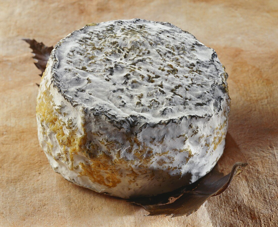 Chataignier, a French goat's cheese