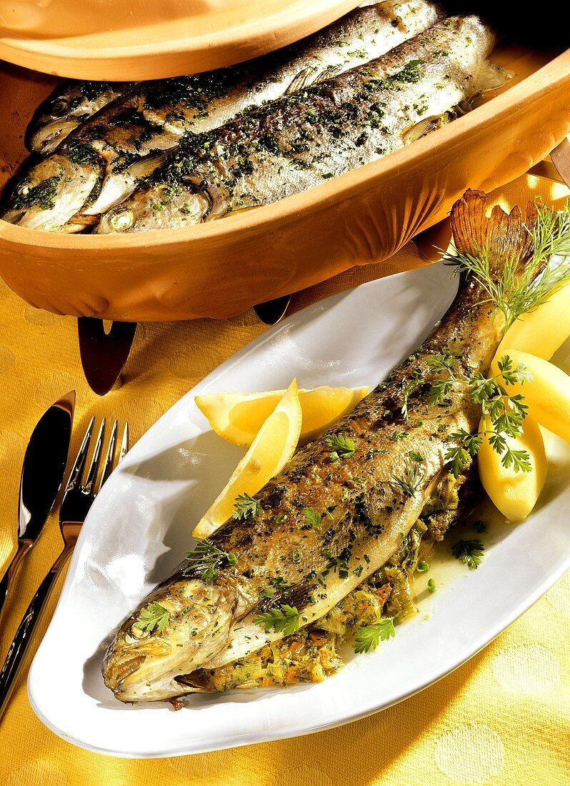 Stuffed trout with herb butter cooked in Römertopf