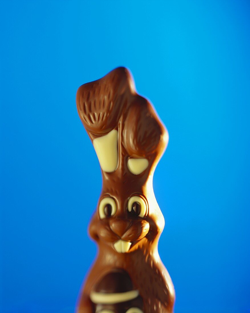 Chocolate Easter bunny against a blue backdrop