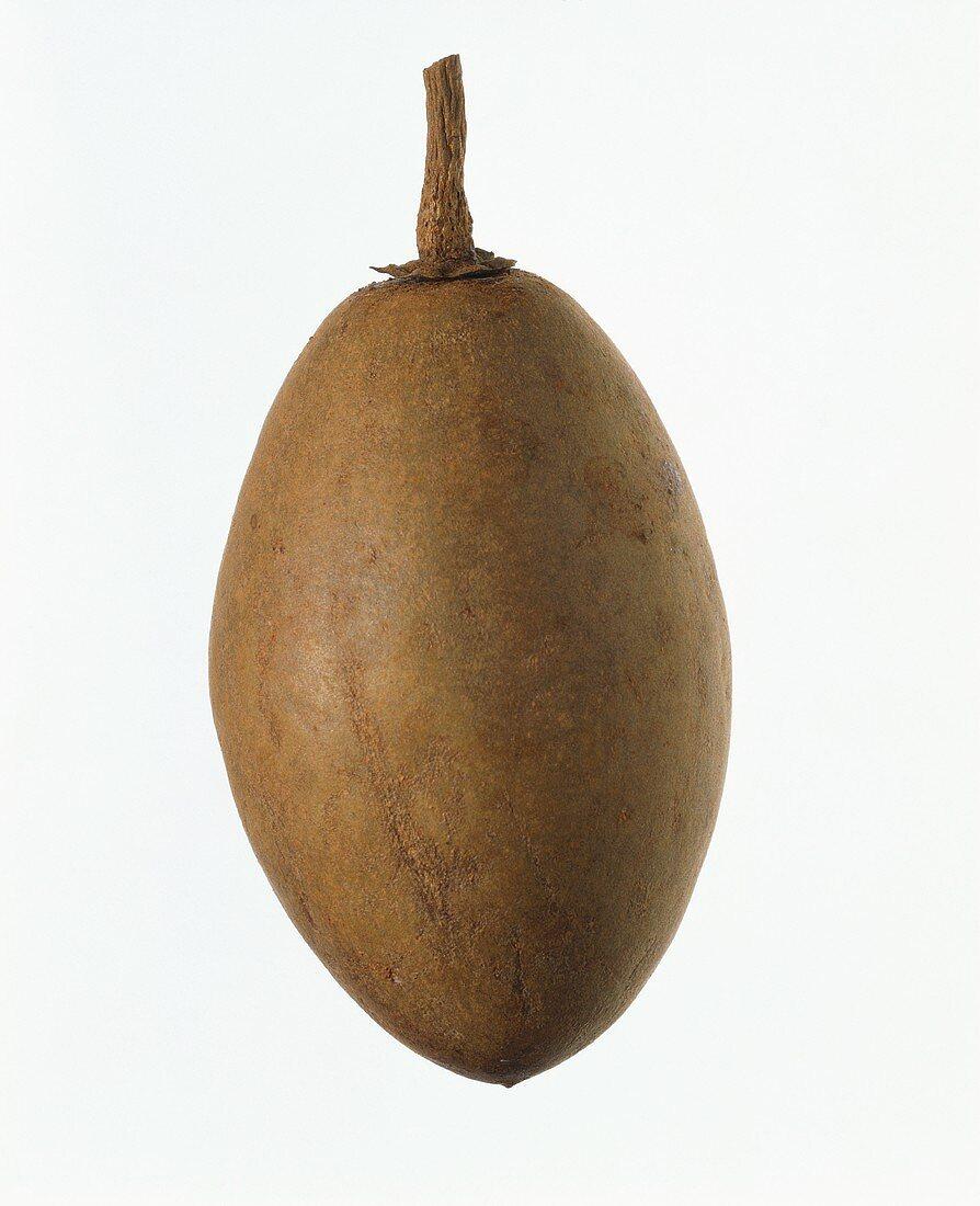 A sapodilla