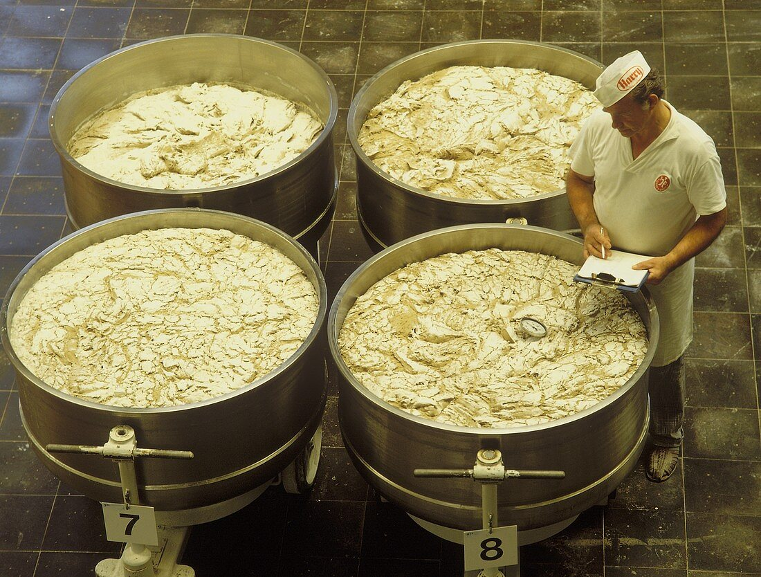 Baker checking leaven in the fermenting vessels