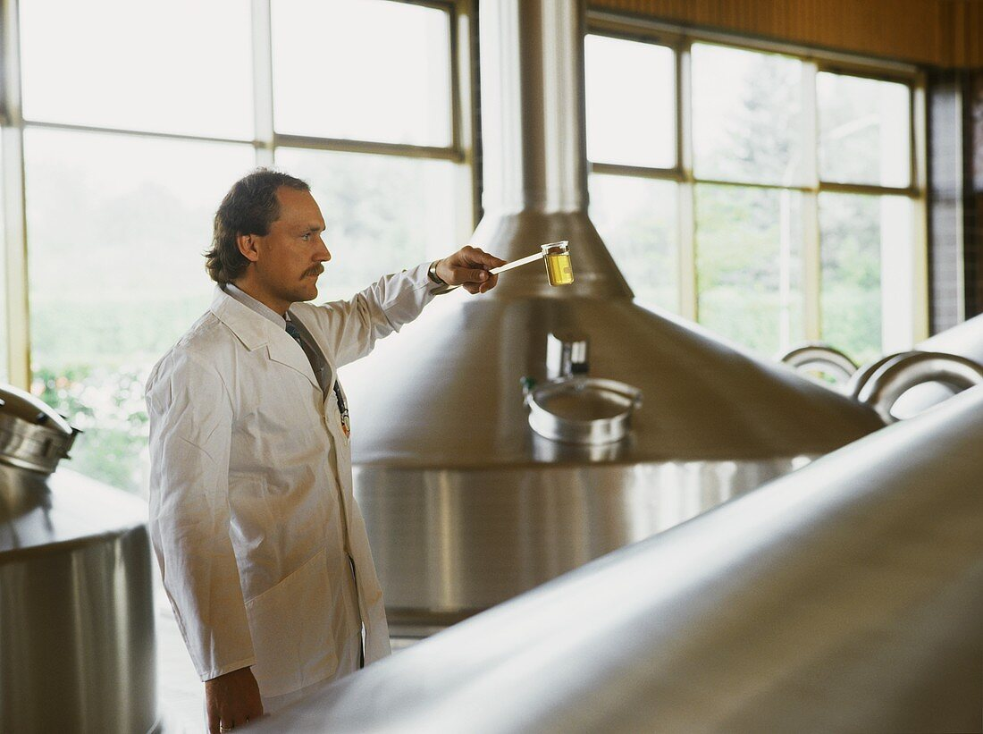 Brewer assessing a beer sample in brewing room