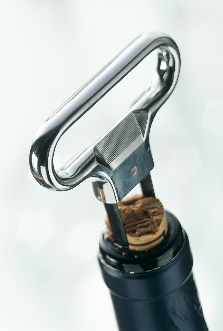 Corkscrew (cork remover) on wine bottle