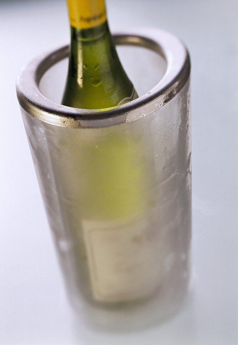 Weinkühler aus Acryl mit Weissweinflasche