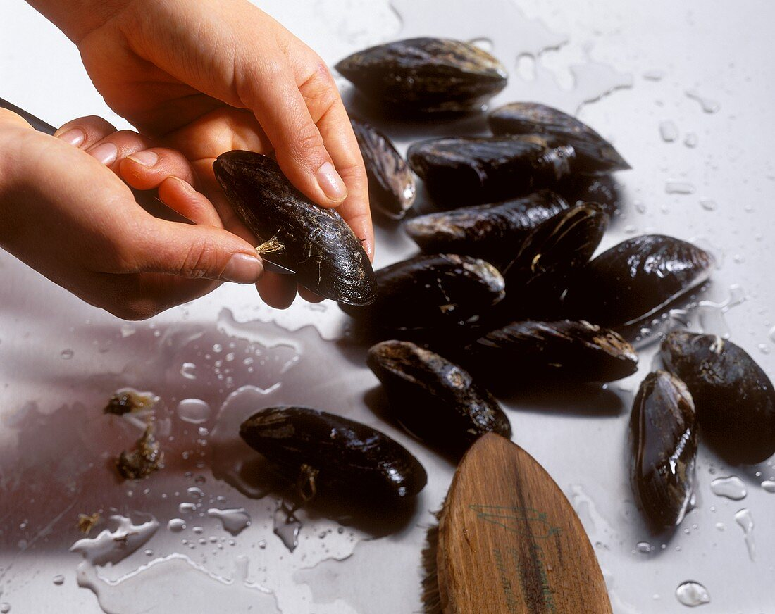 Washing mussels and removing beards