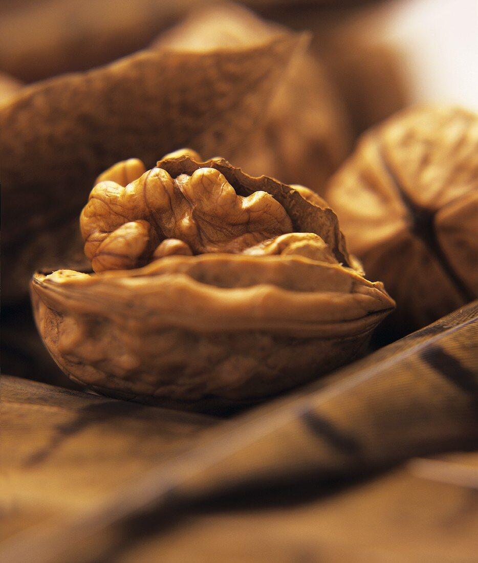 Walnuts among walnut leaves