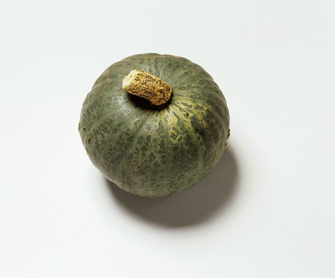 Green squash, variety: Kabocha (English - Sweet Mama)