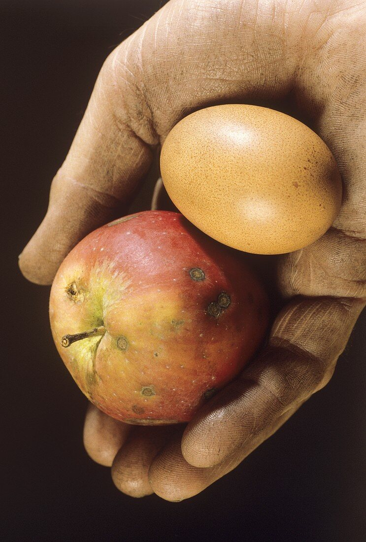 Dirty hand holding apple and an egg