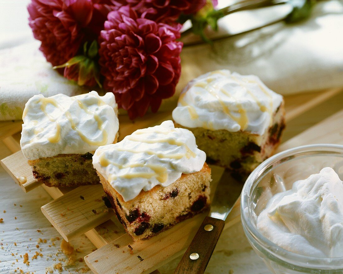 Blackcurrant cake with cream and advocaat
