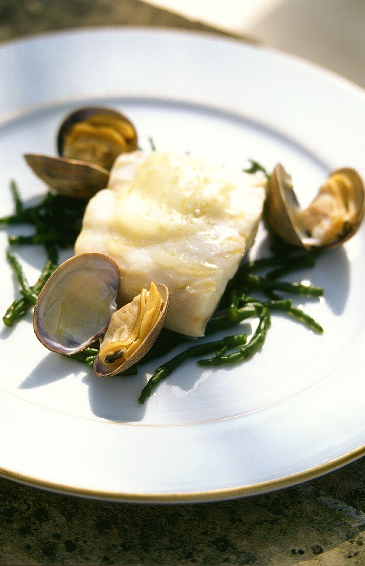 Sea bass fillet with cockles and marsh samphire