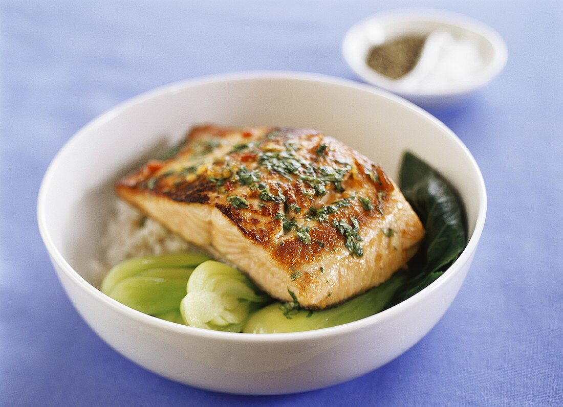 Fried salmon fillet on pak choi and rice