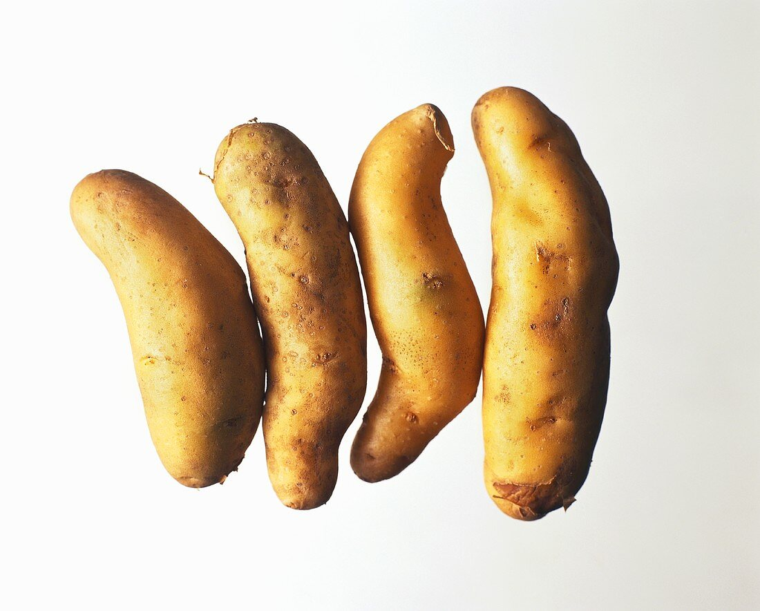 French potato variety: La Ratte