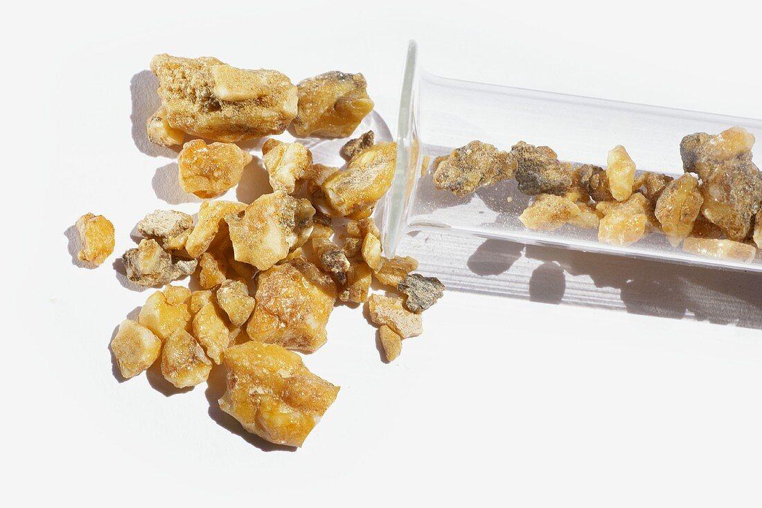 Myrrh (resin of the Balsam tree) with test-tube