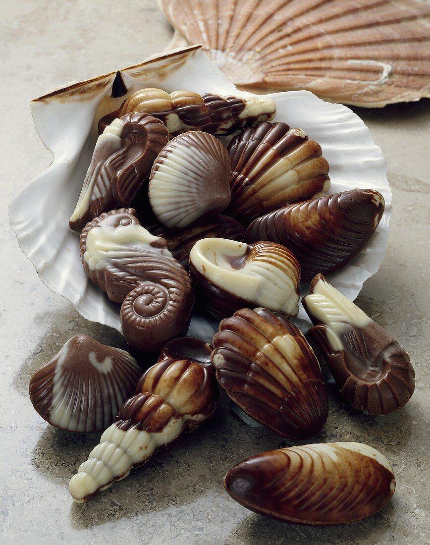 Chocolate seafood in sea shell