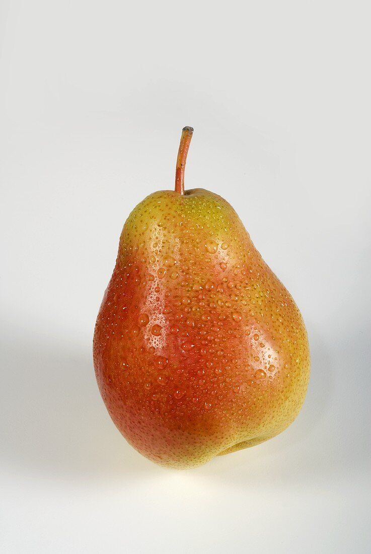 A Forelle pear with drops of water